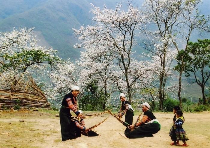 Nét đẹp của những khu du lịch Mộc Châu