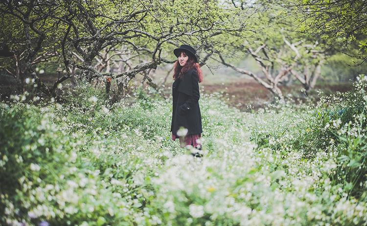 Hoa cải trắng Mộc Châu 2017: chia sẻ từ A Z