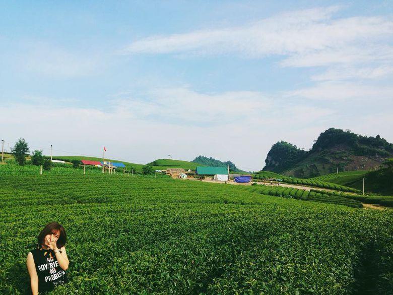 Những lý do nhất định phải đến Mộc Châu (Đà Lạt thứ 2 của miền bắc)