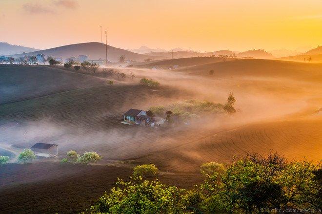 """Phong cảnh """"thần tiên"""" của Mộc Châu trong sương sớm"""