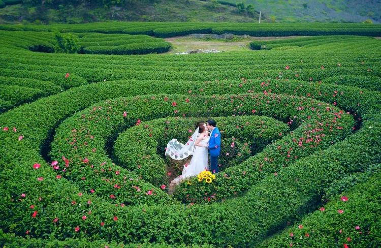 Chụp ảnh cưới ở Mộc Châu: Những khung cảnh không thể bỏ qua