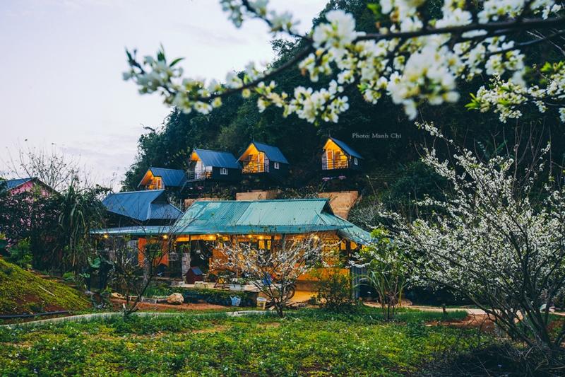 Homestay Phố núi tình yêu: Bình yên và lãng mạn