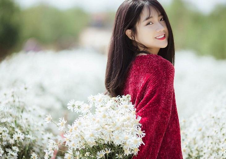 vuon cuc hoa mi tren cao nguyen moc chau 9251 4 Cúc hoạ mi khoe sắc tinh khôi trên Cao nguyên Mộc Châu