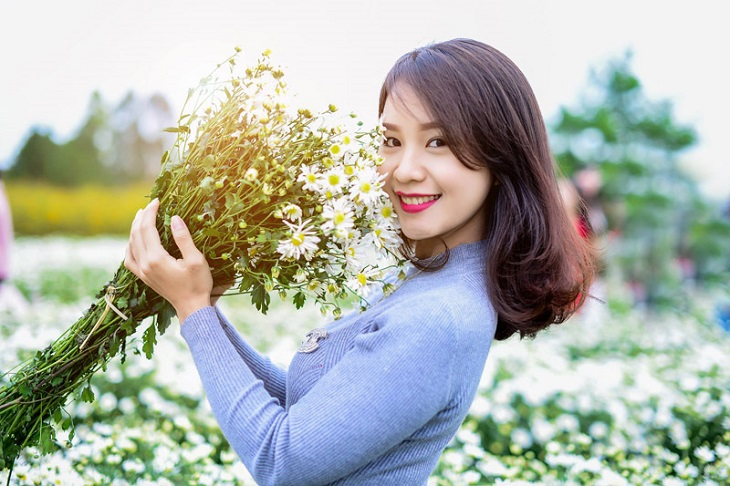 vuon cuc hoa mi tren cao nguyen moc chau 9251 6 Cúc hoạ mi khoe sắc tinh khôi trên Cao nguyên Mộc Châu